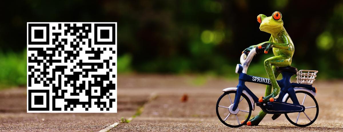 QR code to Virtual UNESCO RILA Ride 2020